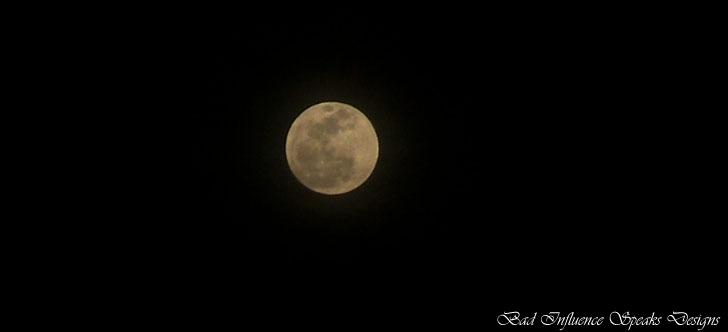 Wolf moon 4 bisd