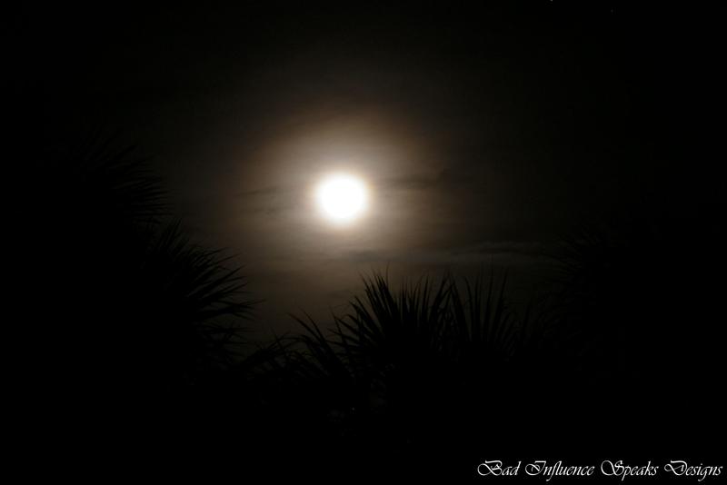 Wolf moon 5 bisd