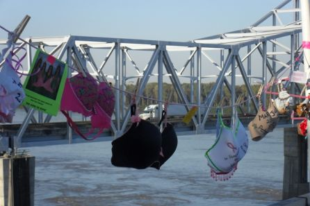Bras across the mississipi 2009.1