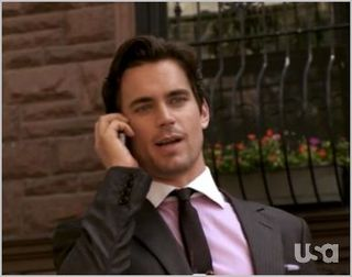White collar, countermeasures, neal