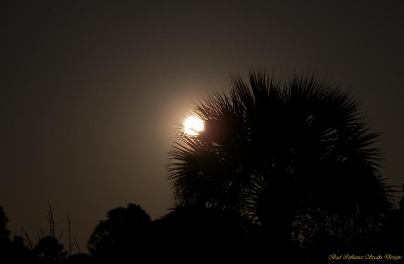 Full moon 19 March 2011