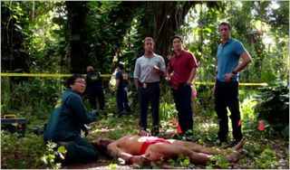 Hawaii five-0, kupale, team