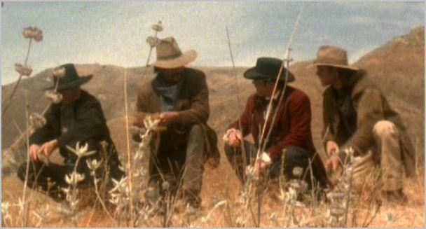 Magnificent seven, wagon train 1, chris, buck, ezra and vin