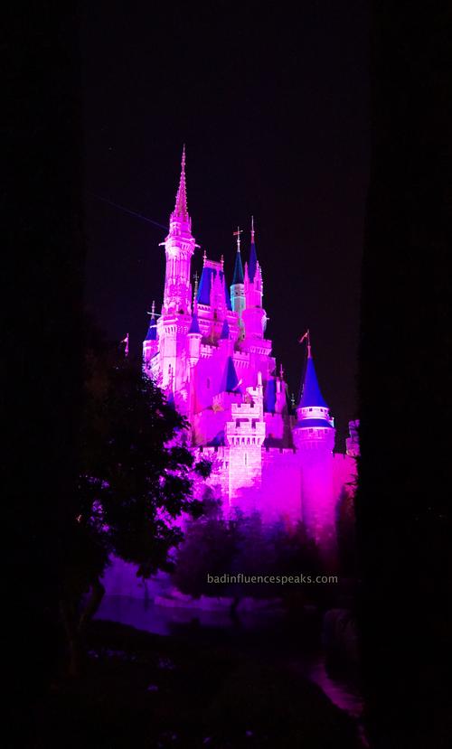Castle in purplebis